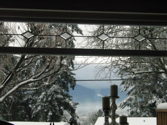 snowview